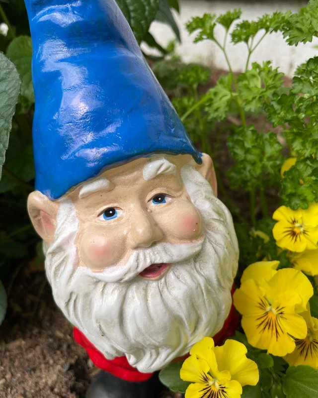 """What better way to get out this June than by completing the """"Getting to Gnome Our Community Helpers"""" scavenger hunt orchestrated by North Quabbin Community Coalition?! Stop by our farm store and a slew of other North Quabbin businesses to find all the gnomes! . . . #diemandfarm #wendellma #farmstore #shoplocal #familyfarm #westernma #franklincounty #pioneervalley #bealocalhero #othersidema #visitwesternma #igers413 #newengland_igers #igersmass #massachusetts_igers #navigatingnewengland #roadtripnewengland #gnome"""