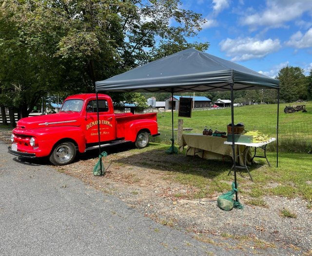 We have the stand from @fallen.oak.farm set up again! Come get your fresh corn, watermelon, and hot peppers while supplies last.  ✨We're closing early on Labor Day! 8am-2pm ✨ . . . #diemandfarm #wendellma #farmstore #shoplocal #buylocal #familyfarm #westernma #franklincounty #pioneervalley #bealocalhero #othersidema #visitwesternma #igers413 #newengland_igers #igersmass #massachusetts_igers #navigatingnewengland #roadtripnewengland
