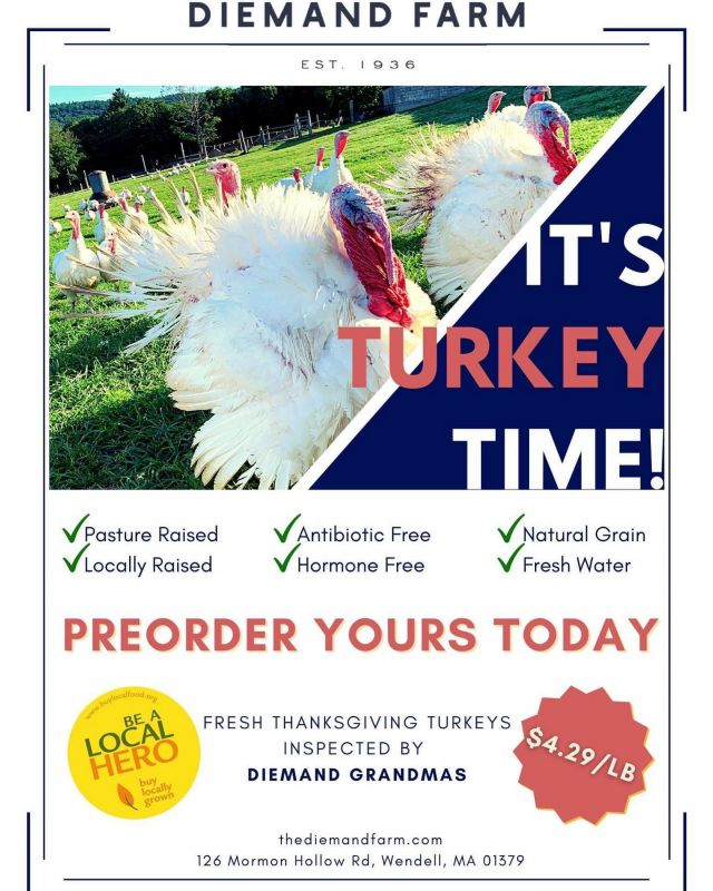 It's turkey time! Preorder your fresh Thanksgiving turkey today. Simply visit our website at thediemandfarm.com/turkeys to see all of your options and for a link to place your order. 🦃 . . . #diemandfarm #wendellma #farmstore #shoplocal #buylocal #turkeytime #pastureraised #turkeys #thanksgiving #familyfarm #westernma #franklincounty #pioneervalley #bealocalhero #othersidema #visitwesternma #igers413 #newengland_igers #igersmass #massachusetts_igers